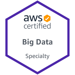 AWS Certified Big Data – Specialty Certification